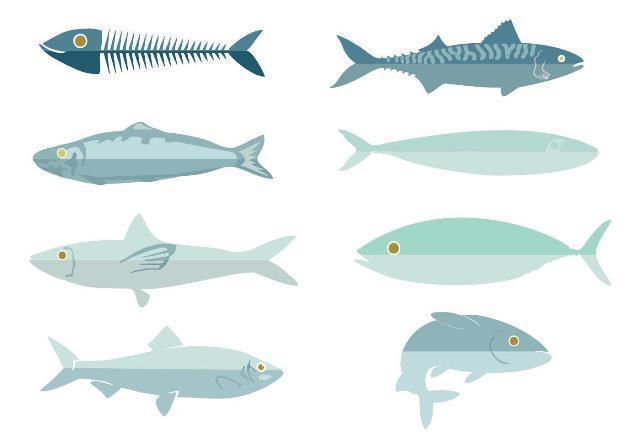 free-fresh-fish-sardine-vector.jpg