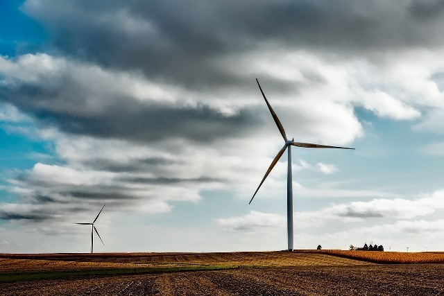 wind-farm-1747331_1280.jpg